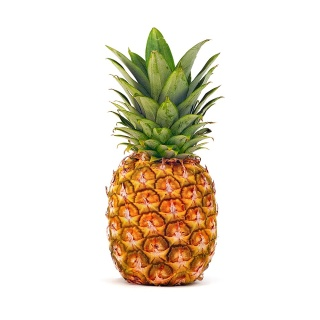 Pineapple| 1Lg | Local |